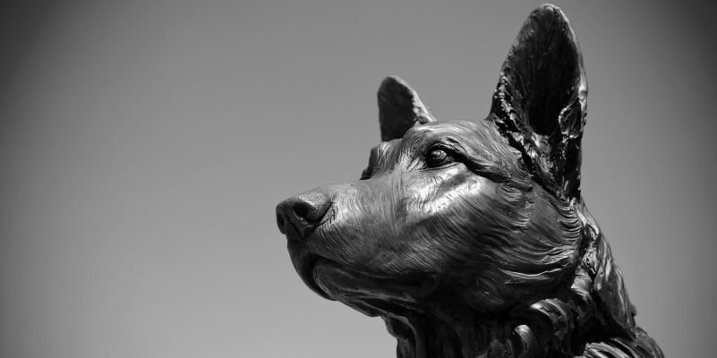 VPD Dog Memorial