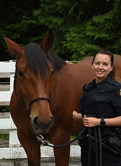 Police Horse Nelson