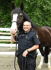 Police Horse Tex